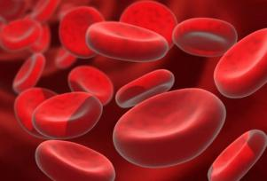 Matičnie ćelije za suprotstavljanje plastičnoj anemiji