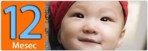 Beba dvanaesti mesec